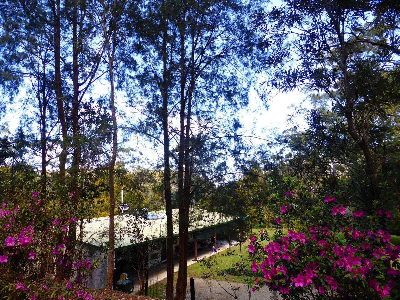 369 Tully Falls Road, Ravenshoe QLD 4888, Image 0