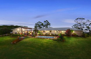 Picture of Eltham NSW 2480