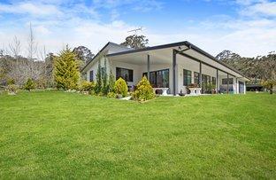 Picture of 117 Mount Irvine Road, Mount Wilson NSW 2786