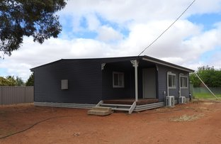 Picture of 178 Harben Street, Balranald NSW 2715