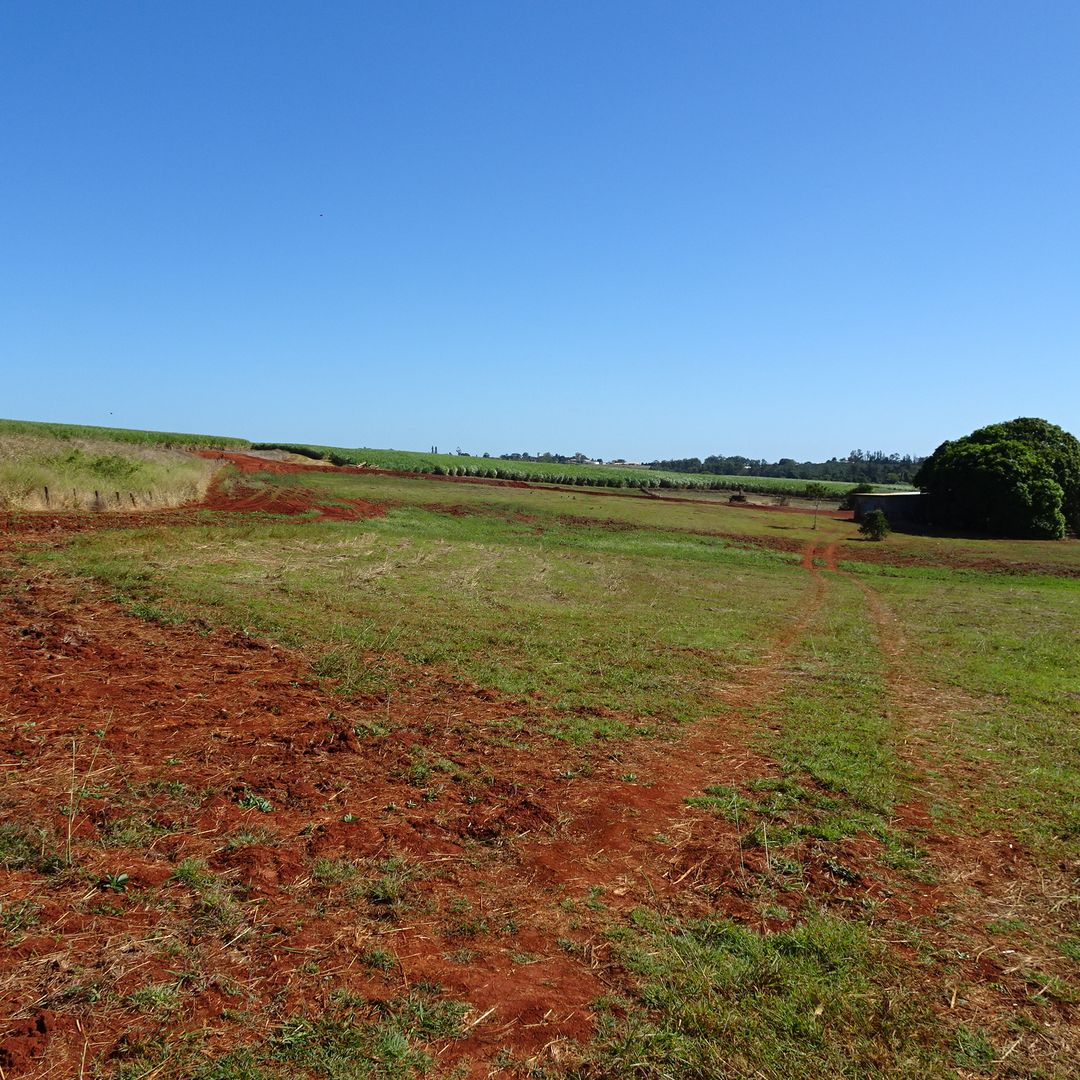 Lot 7 SOUTH ISIS ROAD, South Isis QLD 4660, Image 1