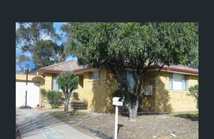 Picture of 11 Woodstock Street , Tamworth NSW 2340