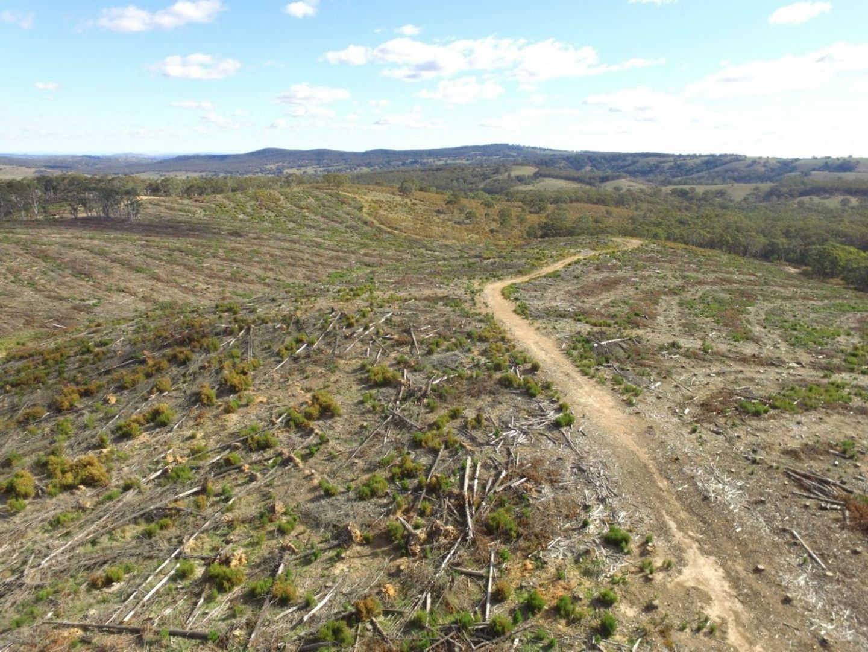 Lot 4 Mullins Creek Road, Gurrundah NSW 2581, Image 1