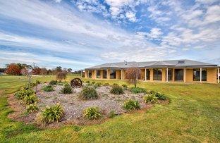 3313 Barooga-Tocumwal Road, Barooga NSW 3644