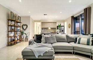Picture of 50 Meredith Avenue, Glengowrie SA 5044