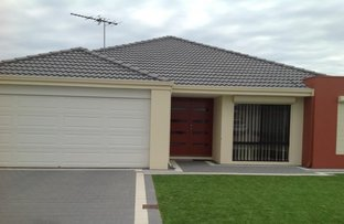 Picture of 69 Blackwood Meander, Yanchep WA 6035