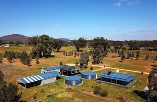 Picture of 591 Pipetrack Rd, Stawell VIC 3380
