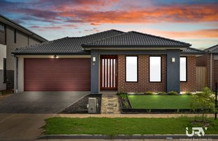 Picture of 13 Inkerman Crescent, Mickleham VIC 3064