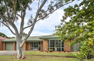 Picture of 11 Wirrabarra Place, Berwick VIC 3806