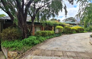 Picture of 78 Whiting Road, St Agnes SA 5097