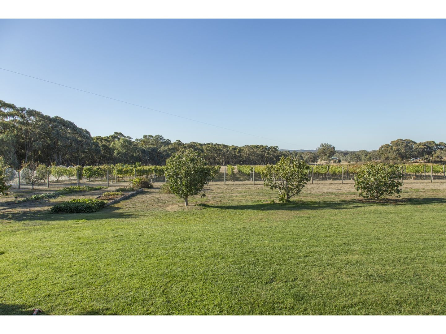 130 Rooney Road, Mandurang South VIC 3551, Image 2