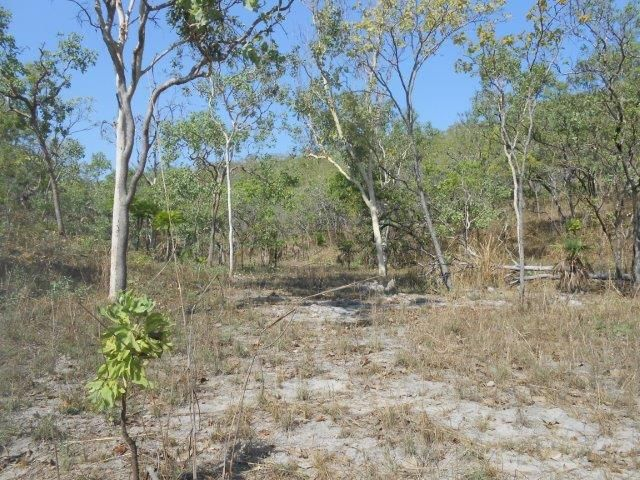 Stuart Highway, Coomalie Creek NT 0822, Image 1