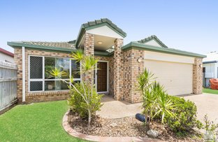 Picture of 3 Alpina Place, Kirwan QLD 4817