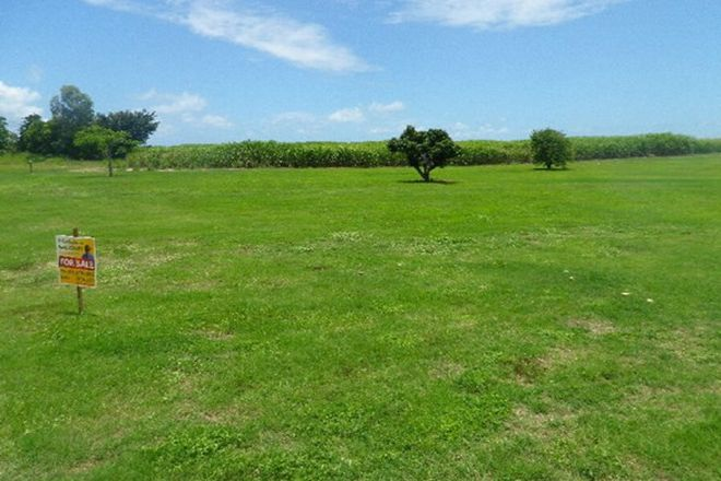 Picture of Lot 8 Parravacinis Road, HALIFAX QLD 4850