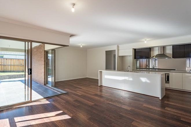 224 Rental Properties in Port Macquarie, NSW, 2444   Domain
