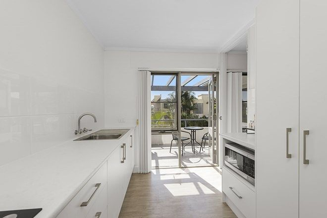 Picture of 13/21 Park Street, PORT MACQUARIE NSW 2444
