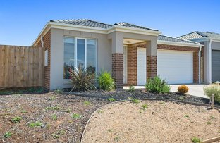 14 Hedgerow Avenue, Brookfield VIC 3338