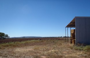 Picture of Lot 166  Grigg Rd, Leeton NSW 2705