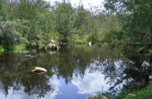 Picture of LittleGlen/. Bishops Road, Red Range NSW 2370