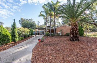 Picture of 16 Astroloma Place, Koongamia WA 6056