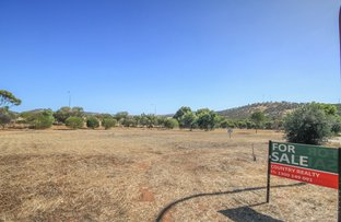 Picture of 12 Tomkins Bend, Toodyay WA 6566