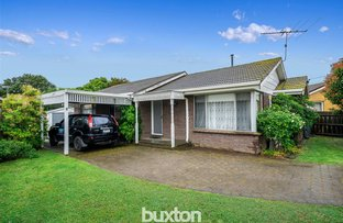 Picture of 23 Anthony Street, Newcomb VIC 3219