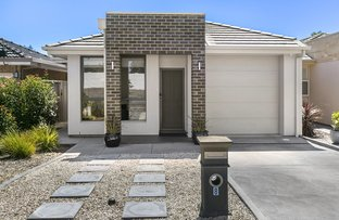 Picture of 8 Westmoreland Road, Grange SA 5022