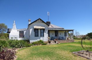 "Picture of ""Hilltop"" 204 Linden Road, Harden NSW 2587"