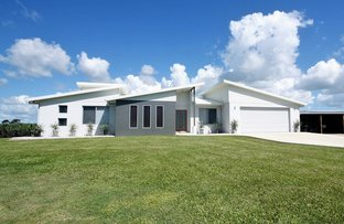 Picture of 172 Kilrie Road, Ayr QLD 4807