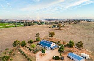 Picture of 4145 Belubula Way, Moorbel NSW 2804
