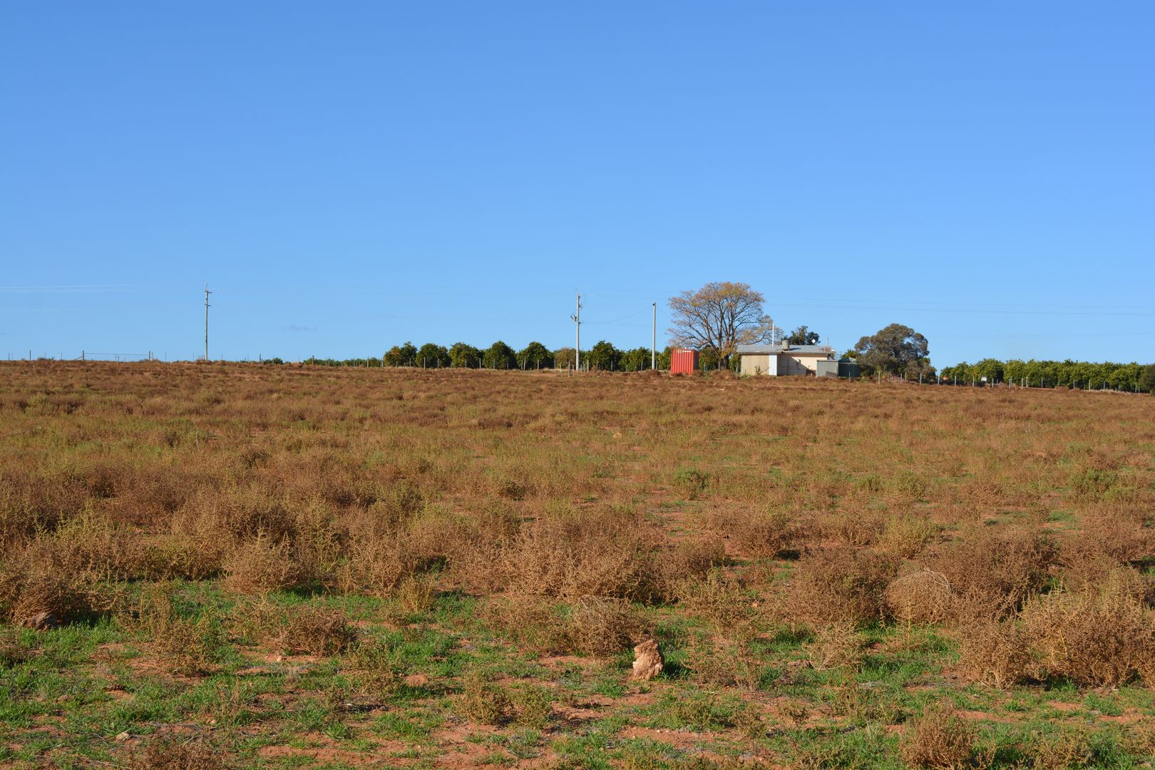 114 Bonnie Doon Road, Monak NSW 2738, Image 2