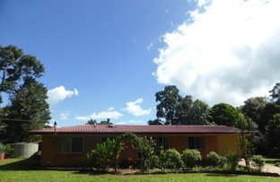 113 Hogan Road, Tarzali QLD 4885