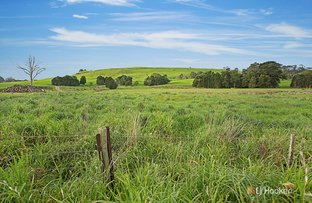 Picture of Lot 1 Preolenna Road, Flowerdale TAS 7325