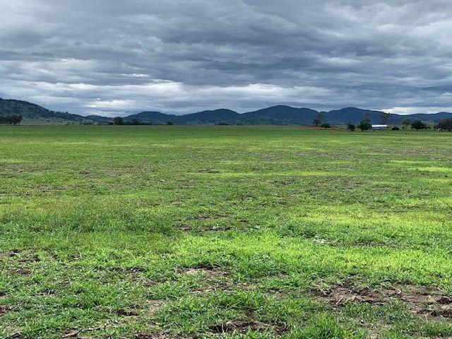 1063 BITHRAMERE LANE, Bithramere NSW 2340, Image 1