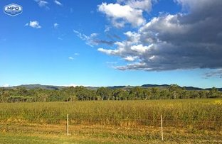 Picture of 298 Leafgold Weir Road, Dimbulah QLD 4872