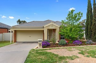 Picture of 46 Botanical Drive, Epsom VIC 3551