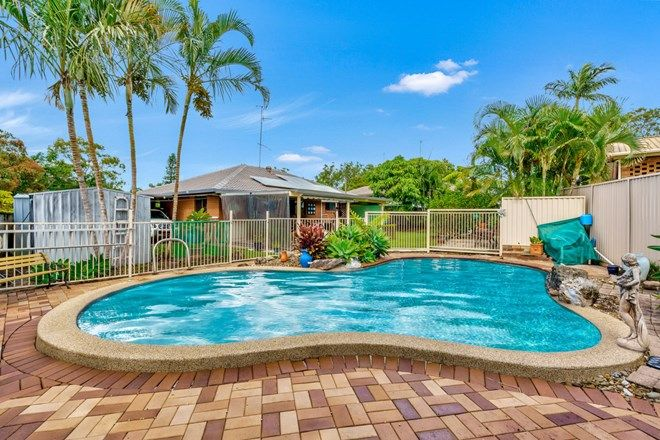 Picture of 11 Colrene Drive, NERANG QLD 4211