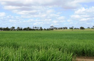 Picture of BAKERS ROAD, South Kolan QLD 4670