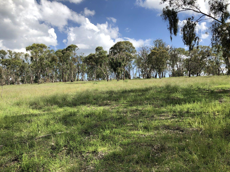 209 Jalna Road, Bendemeer NSW 2355, Image 0