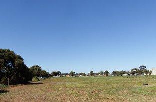 Picture of LOT 4/14 THURUNA ROAD, Tumby Bay SA 5605
