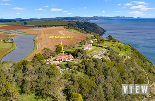 Picture of 282 Tollymore Road, Table Cape TAS 7325