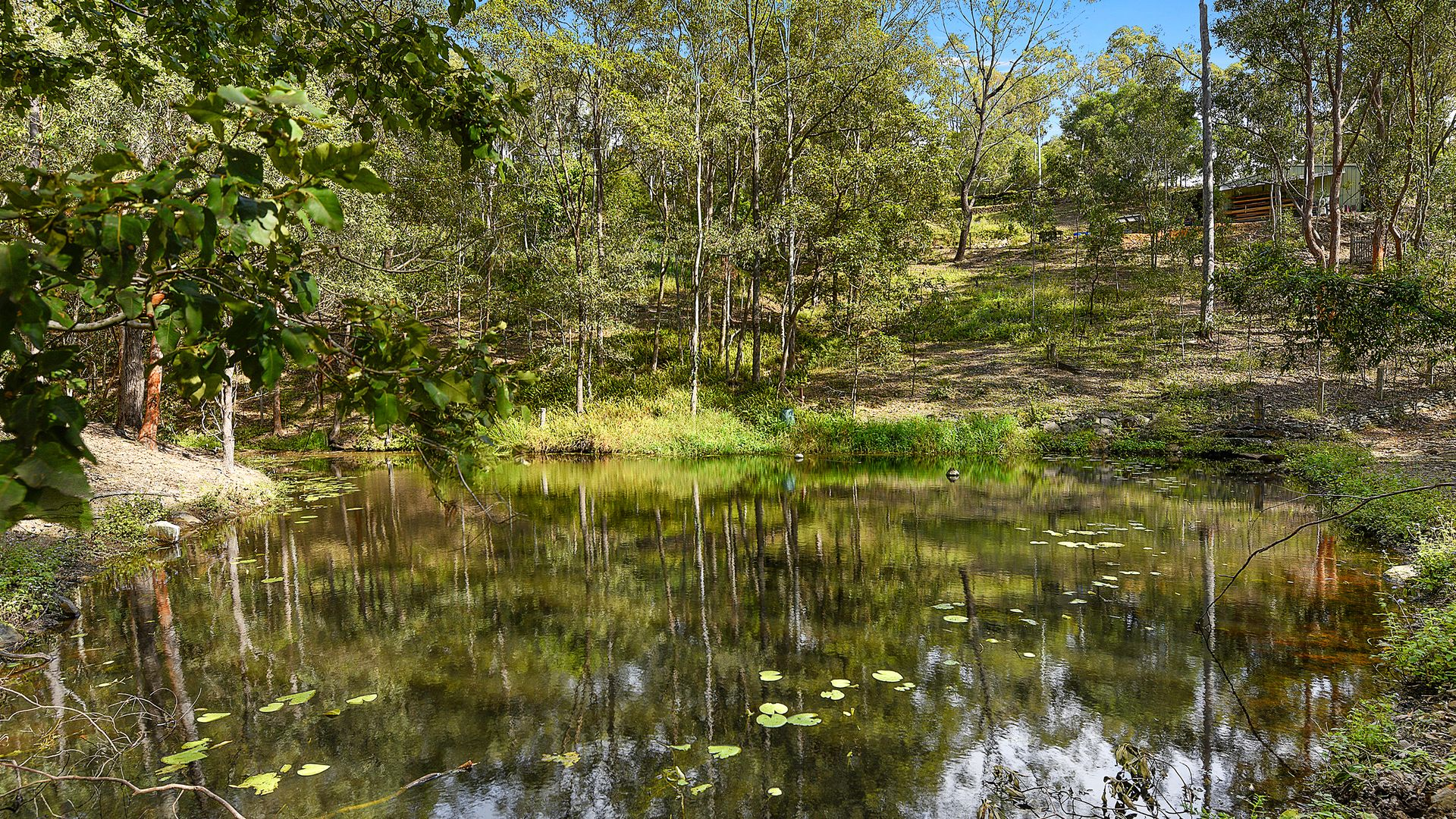57 Purcell Road, Guanaba QLD 4210, Image 2
