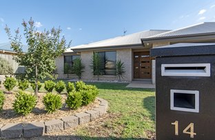 Picture of 14 Wellington Street, Wyreema QLD 4352
