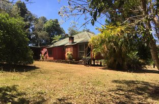 Picture of Lot 1 - 599 Tully Falls Road, Ravenshoe QLD 4888