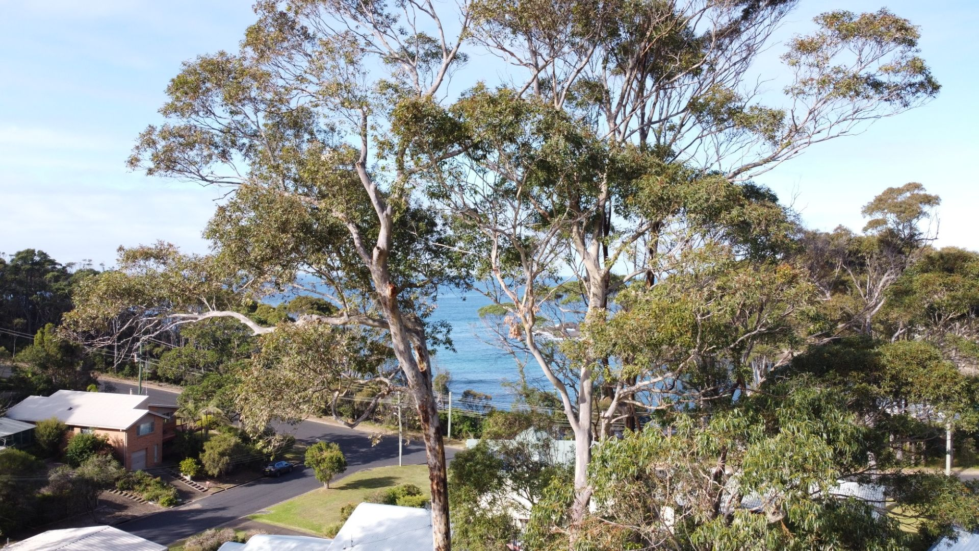 2/350 George Bass  Drive, Lilli Pilli NSW 2536, Image 0