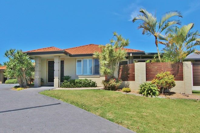 Picture of 1/15 Eagle Place, LAKE CATHIE NSW 2445