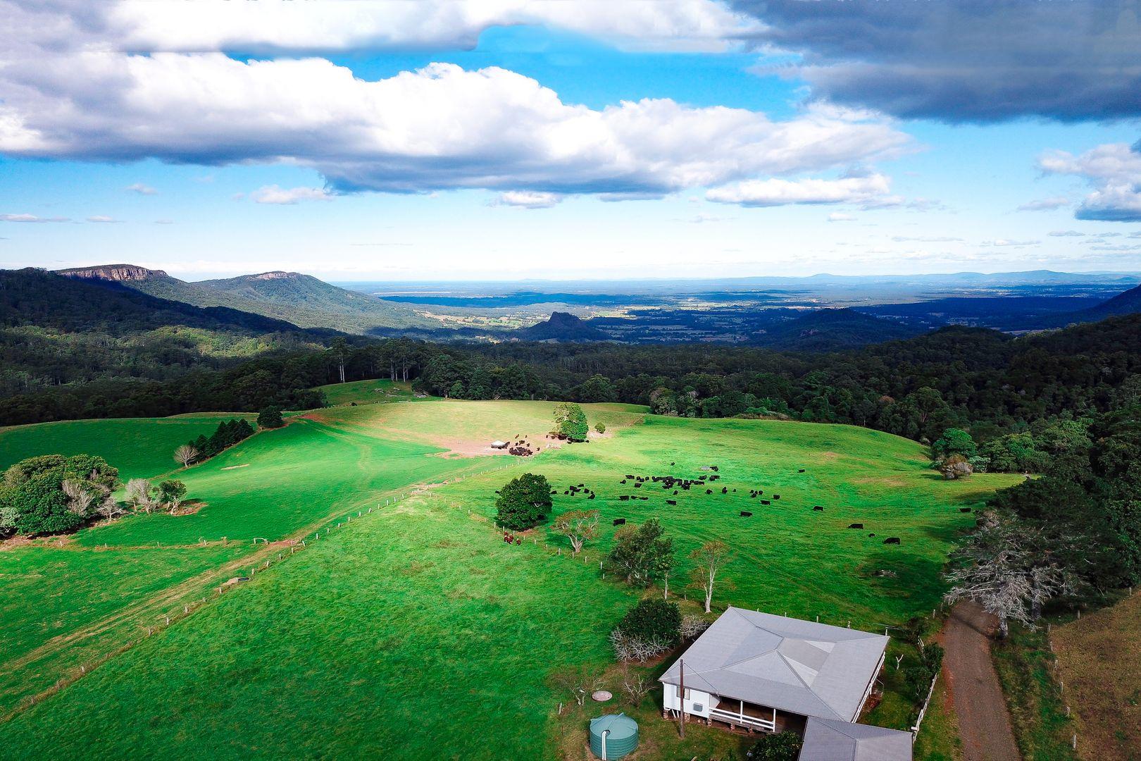 1234 Koppin Yarratt Road, Comboyne NSW 2429, Image 0