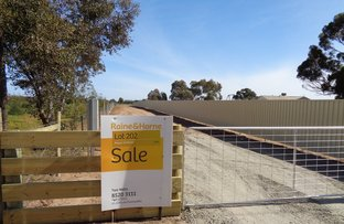 Picture of Lot 202 Williams Road, Two Wells SA 5501
