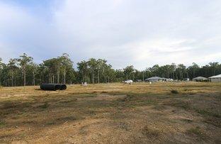 Picture of Lot 17 Dianella Drive, Gulmarrad NSW 2463