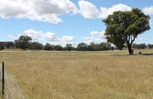 Picture of 103 Adams Lead Road, Gulgong NSW 2852
